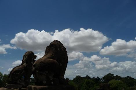 Blog 3 lions