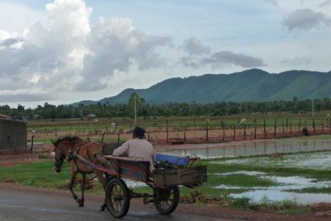 Chariotte à cheval