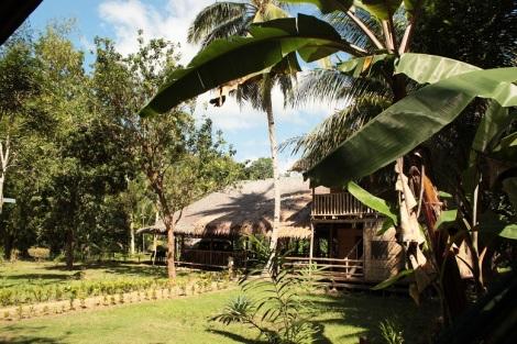 Un bon exemple pour ne pas écouter le Lonely Planet qui ne parlait pas de ces huttes à Loboc (Philippines), et qui devrait, car c'est deux fois moins cher. 500 Pesos, Merci Nipa Hut Village