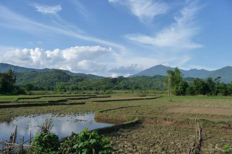 Blog rizière route