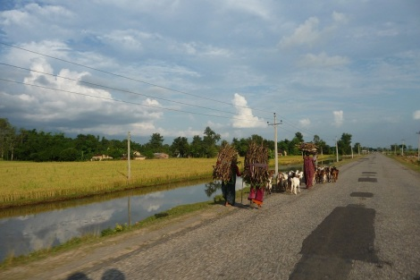 blog-joli-népal-5 (2)