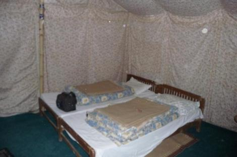 Blog Sarchu 18 notre tente à fleurs
