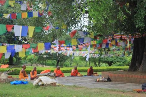 des-moines-colores