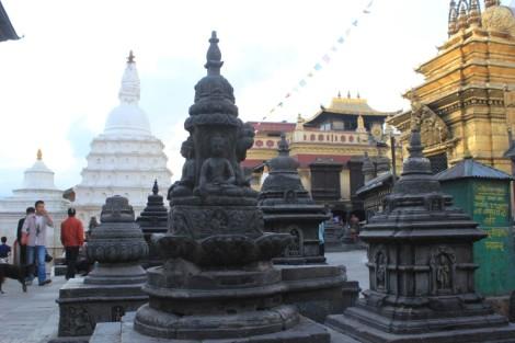 champs-de-buddha
